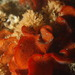Watersipora subtorquata - Photo (c) markham, all rights reserved
