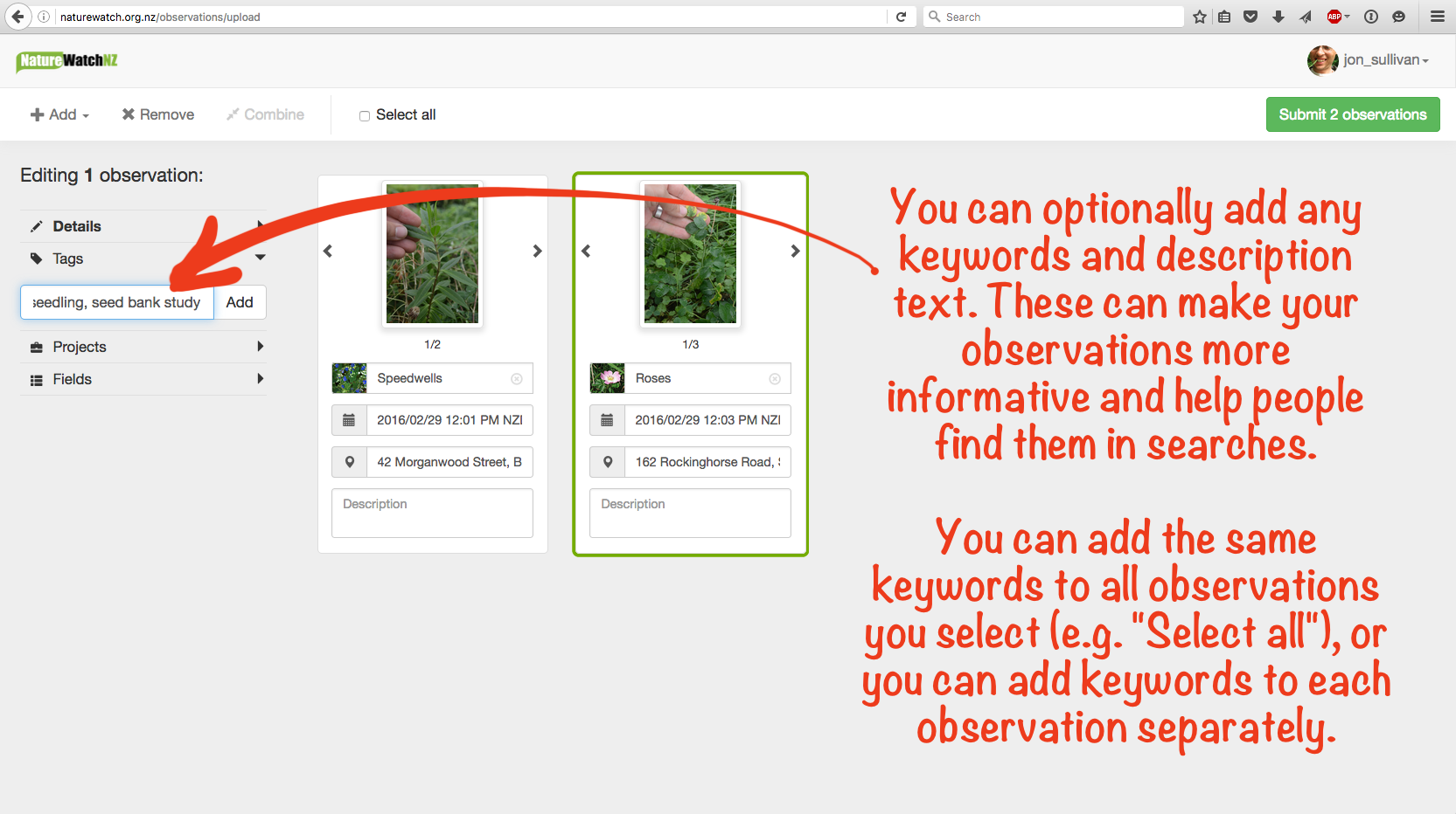 how to add an observation on adwords