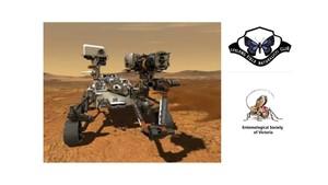 rover-rod