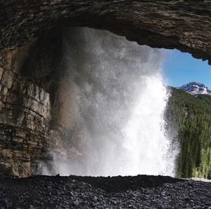 forestlab