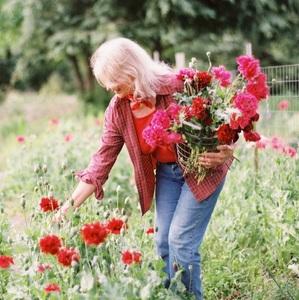 gardeneratlaw