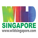 wildsingapore