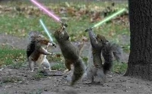 squirrelguy