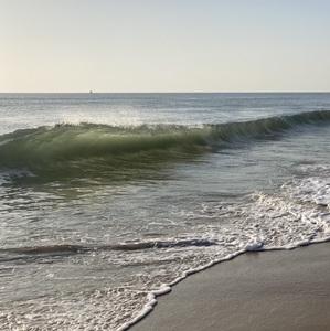 surfman