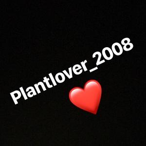 plantlover_2008