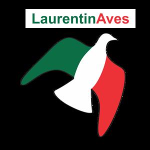 laurentinaves
