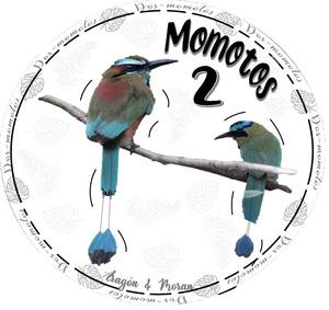 dos_momotos