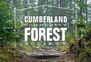 cumberland_forest