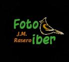 jose_rasero