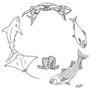 sercfisheries