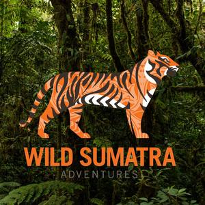 wildsumatra