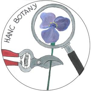 hanc_botanybattalion