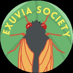 exuviasociety