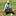milkweedguy
