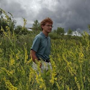 tuftedparidae