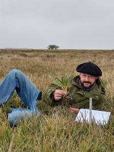 pampa_grasslands