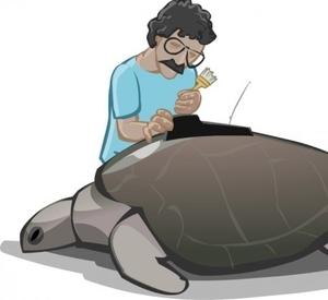 turtlemandan