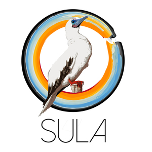 sula_pelecanussas