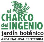 el_charco_del_ingenio
