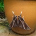 Swallowtail Moths - Photo (c) johnnybirder, some rights reserved (CC BY-NC), uploaded by Johnny Wilson