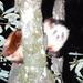 Petaurista alborufus - Photo (c) Cathy Pasterczyk, όλα τα δικαιώματα διατηρούνται