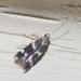 Elachista illectella - Photo (c) treichard, όλα τα δικαιώματα διατηρούνται, uploaded by Timothy Reichard