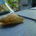 Euglandina striata - Photo (c) Julien B., todos los derechos reservados