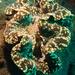 Ostra Gigante Escamosa - Photo (c) Jason Harris, todos los derechos reservados
