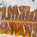 Alaria marginata - Photo (c) Wendy Feltham, כל הזכויות שמורות