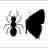 Ant-Butterfly Interactions - Borboletas formigueiras icon