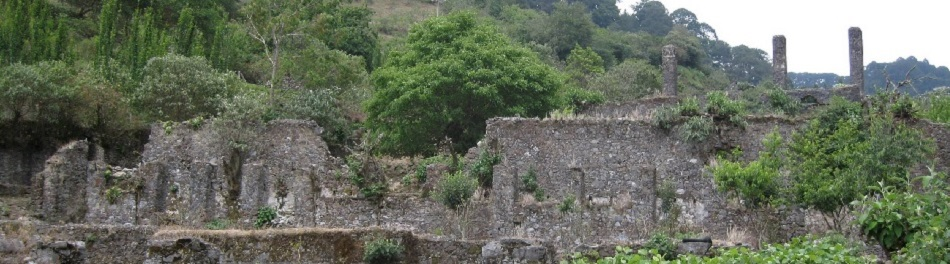 Parque Nacional Los M Rmoles Hidalgo