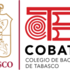Proyecto Naturalista Urbano COBATAB 2021 icon