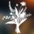 Native Plant Festival BioBlitz 2021 icon