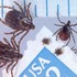 Ticks in North Dakota icon