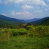 Avery County NC USA Pisgah Forest NC, USA icon