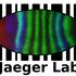 Jaeger lab biodiversity hunt icon