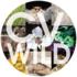 2017 Coachella Valley BioBlitz icon