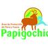 APFF Papigochic icon