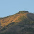 Biodiversidad del Cerro Quitasol icon