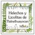 Helechos y Licofitas de Tlalnelhuayocan, Veracruz, México icon