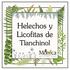 Helechos y Licofitas de Tlanchinol, Hidalgo, México icon