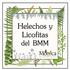 Helechos y Licofitas del BMM, Veracruz, México icon