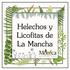 Helechos y Licofitas de La Mancha, Veracruz, México icon