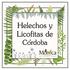 Helechos y Licofitas de Córdoba, Veracruz, México icon