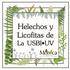 Helechos y Licofitas de La USBI•UV, Xalapa, Veracruz, México icon
