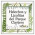 Helechos y Licofitas del Santuario del Bosque de Niebla, Xalapa, Veracruz, México icon