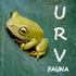 URV Fauna icon