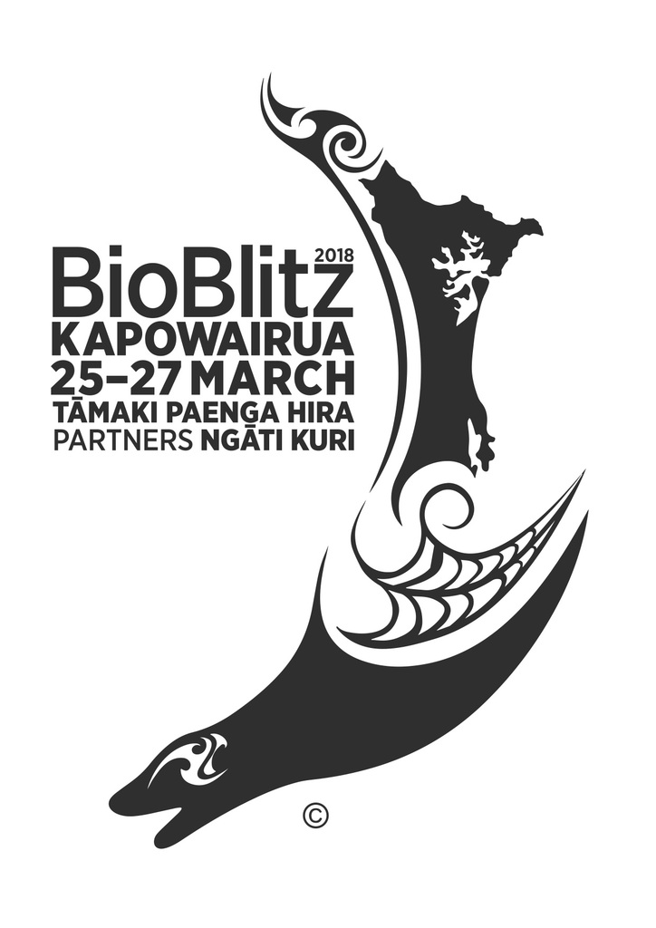 BioBlitz Kapowairua 2018 · iNaturalist