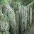 Biodiversità Parco regionale dei Gessi Bolognesi e Calanchi dell'Abadessa icon