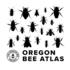 Oregon Bee Atlas (Plant Images/SampleID) icon